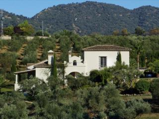Elegant villa for your family holidays near Ronda - Ronda vacation rentals