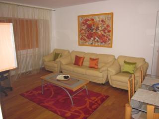 Casata 5 - 1 bedroom apartment - Bucharest vacation rentals
