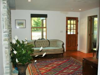 Modern Farmhouse in Rhinebeck/Red Hook on country - Rhinebeck vacation rentals