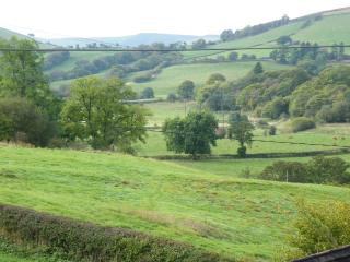 Beautiful 1 bedroom Barn in Llanbister - Llanbister vacation rentals