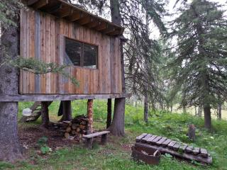 Treehouse in the western woods - Alberta vacation rentals