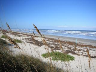 Las Brisas 431 - New Smyrna Beach vacation rentals