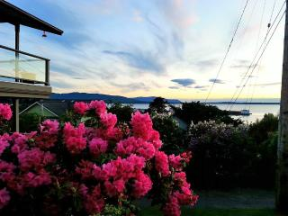 Fairhaven Bayview Suite - Early Dec availability! - Bellingham vacation rentals