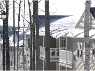 Rent Hancock Ma.2 Bedroom Vac Village  Ski Condo - Berkshires vacation rentals