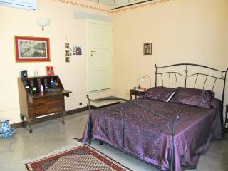 Cozy Apartment between sea and olives in Salento - Soleto vacation rentals