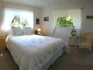Hapu' u Fern Cottage 2 bedroom/2 bath with hot tub - Volcano vacation rentals