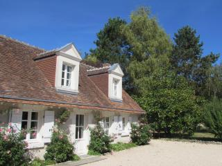 A Cosy French Cottage in the Grand Chateaux Area - Chitenay vacation rentals