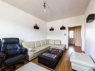 Cosy apartment in Tallinn centre - Tallinn vacation rentals