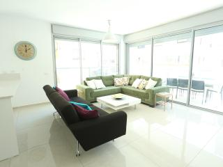 Luxury Urban Living steps to beach! - Ben Yehuda - Tel Aviv vacation rentals