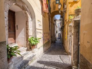 Between Amalfi, Pompei, Paestum, Positano - Cava De' Tirreni vacation rentals