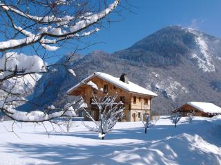Perfect Chalet with Internet Access and Central Heating - Bonnevaux vacation rentals