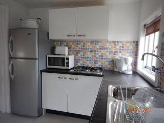 Luxury Recently Renovated 2 bedroom Apartment - Pos Chiquito vacation rentals