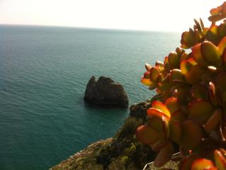 Nice Condo with Internet Access and Cleaning Service - Praiano vacation rentals