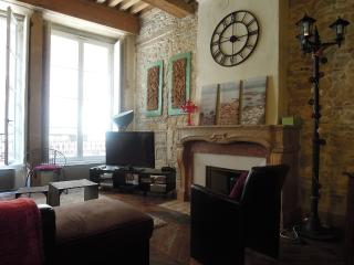 Les Augustins Saone & Terreaux - Lyon vacation rentals