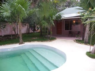 cottage 2 and spa  in the Jungle Special Offer - Puerto Morelos vacation rentals