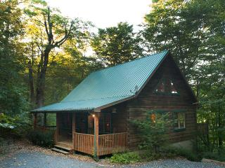 The Chook Shed - Todd vacation rentals
