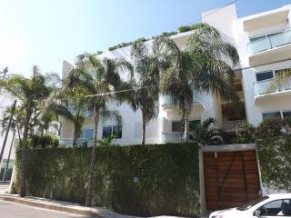 Papaya Plus Luxury Apartment Playa del Carmen - Playa del Carmen vacation rentals