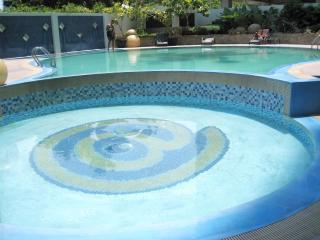 New Lux. 2BR condo w. pools at Ayala Mall/Terraces - Cebu City vacation rentals