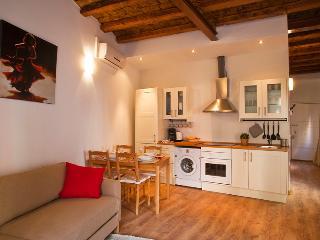 Plaza Universitat Apartment - Barcelona vacation rentals