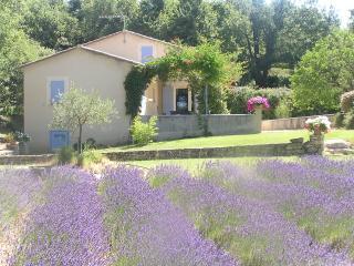 JDV Holidays - Villa St Fleurie, Bonnieux - Bonnieux vacation rentals