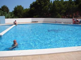 Costa Blanca South - 2 Bed G/F Aprt Playa Flamenca - Alicante vacation rentals