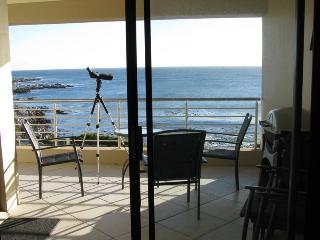 Nice Condo with Satellite Or Cable TV and Water Views - De Kelders vacation rentals