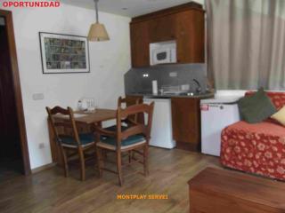 Estudio La Peira Vielha - Lleida vacation rentals