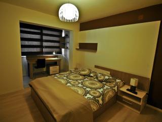 Cluj Napoca Apartament Lux Titulescu - Cluj-Napoca vacation rentals