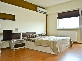 Cluj Napoca Apartament Lux 21 Decembrie - Cluj-Napoca vacation rentals
