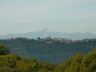 Luxury accommodation in Langhe land World Heritage - Trezzo Tinella vacation rentals