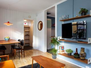 Family Home in Reykjavik city center - Reykjavik vacation rentals