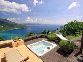 Wonderful 3 Bedroom Villa on Tortola - Tortola vacation rentals
