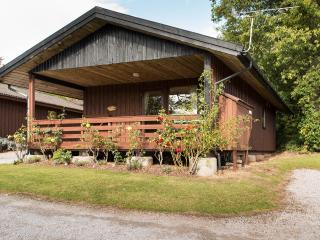 Woodcombe Lodges and Cottages -Yew Tree Lodge - Porlock vacation rentals