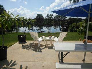 Spacious lower level on 8 acres. - Ocklawaha vacation rentals