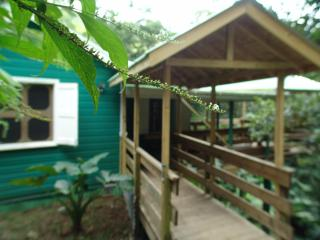 Birdwatchers Rainforest Cottage - Roseau vacation rentals