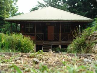 Nice Cottage with Deck and Internet Access - Morne Trois Pitons National Park vacation rentals