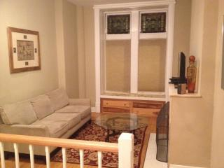 Lincoln Park LUX Duplex w/private roof - Chicago vacation rentals