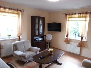 apartment near stadium - Wroclaw vacation rentals