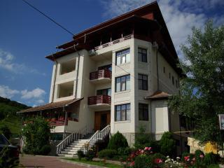 Villa Olga Sărata-Monteoru,Buzău(free wifi&pool) - Romania vacation rentals