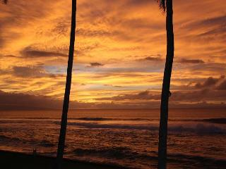 Discover this beautiful, newly renovated, direct oceanfront condo! - Lahaina vacation rentals