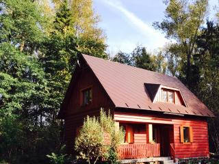 Fisherman Cabin in Orava  or RYBAROVA CHATA - Namestovo vacation rentals