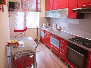 Modern apartment in Lviv - Lviv vacation rentals