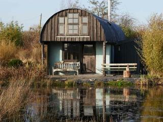 Barn on the pond - Crymych vacation rentals