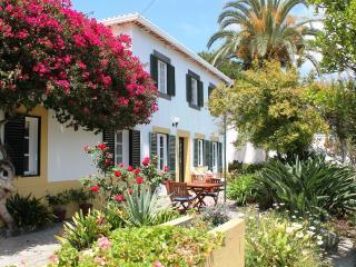 Casa Belflores - Funchal vacation rentals