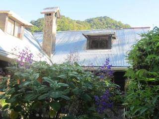 Paul's Cottage: Enjoy Terrace & Garden - Boquete vacation rentals