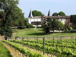 Nice Chateau with Internet Access and Tennis Court - Lignan-De-Bordeaux vacation rentals