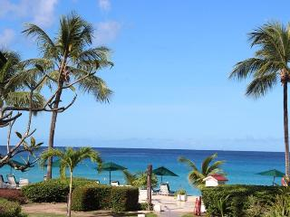 Essential 2 bedroom apartment with ocean views and surrounded in beautiful gardens - Sugar Hill vacation rentals