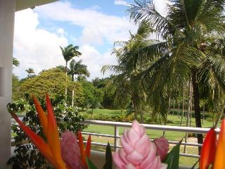 Elegant 2 bedroom Penthouse next to the beach. Communal pool and access to amenities. - Saint Lucy vacation rentals