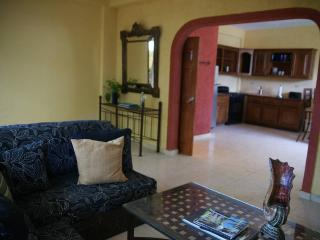 Deluxe 1-bedroom apt in Petionville, Haiti - Petionville vacation rentals