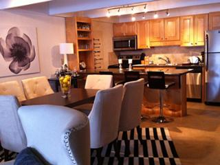 2 Bedroom/2 Bath Condo At Chateau Blanc- Unit 9 - Aspen vacation rentals
